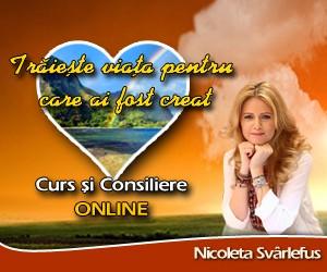 Curs online 300pe250