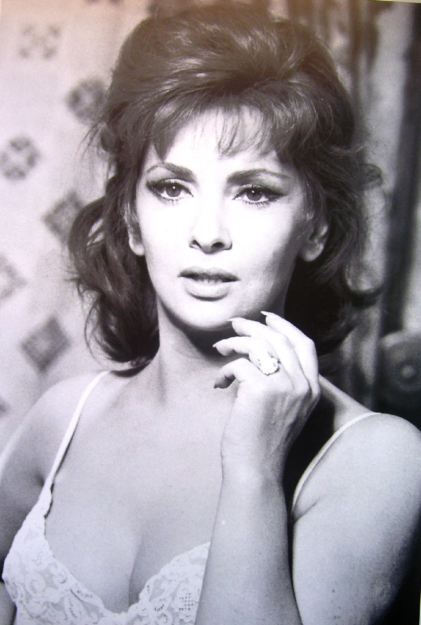 Gina Lollobrigida - Wallpaper Gallery