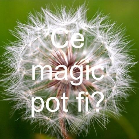Ce Magic pot fi?