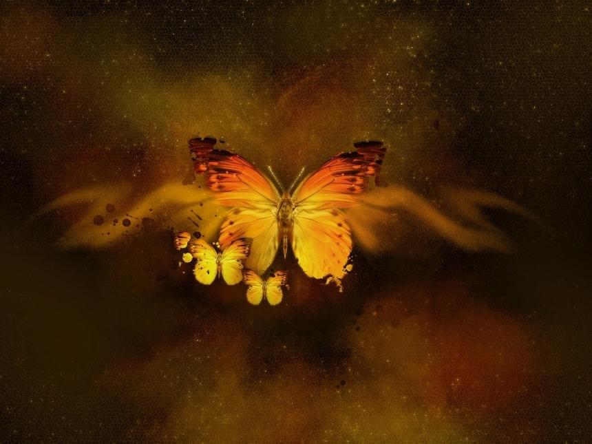 Inima transformarii. Cat de curajoasa este iubirea ta?