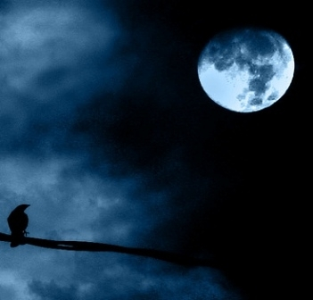Luna Plina in Capricorn