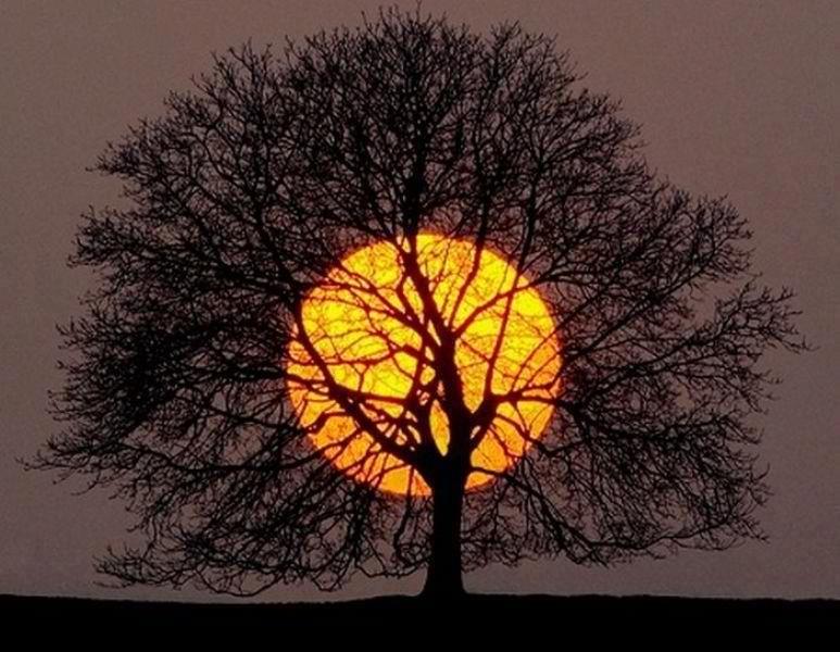 Luna Plina in Varsator- 10 august 2014. O revolutie a Constiintei