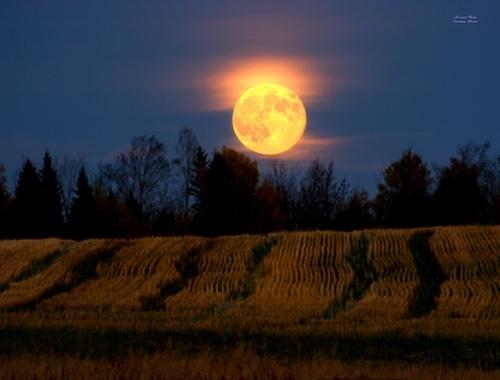 Luna Plina si eclipsa de Luna- 19 octombrie. Devin importante deciziile si actiunile la scara mare