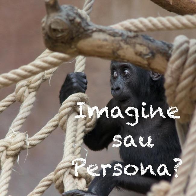 Persona sau Imagine?