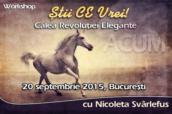 Stii CE Vrei! Workshop, 20 septembrie 2015, Bucuresti
