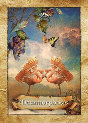 Berbec - Metamorphosis