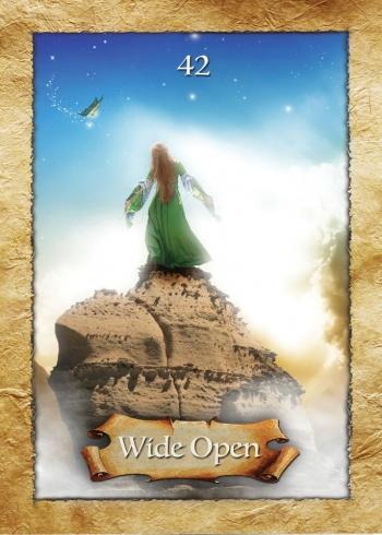 Leu - Wide Open